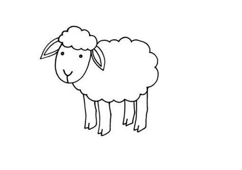 imagenes de ovejas faciles para dibujar ovejas dibujos para colorear