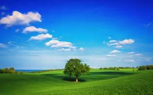 Home Design 3d Para Pc Mega Ideal Landscape 1920 X 1200 Nature Photography