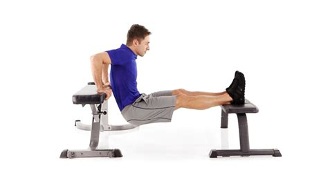 tricep bench dips how to do triceps dips on bench gymchalo