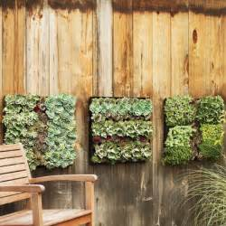 outdoor planter ideas how to use planters to beautify your outdoor areas freshome com