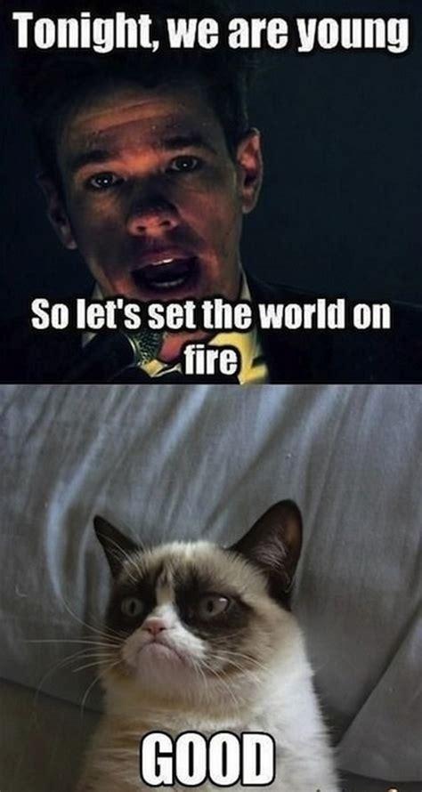 Sarcastic Cat Meme - sarcastic memes