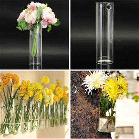Wall Mounted Glass Flower Vases by Wall Mounted Hydroponic Plants Flower Glass Vase Home