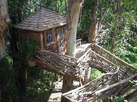 beautiful tree houses prime home design beautiful tree beautiful tree houses prime home design beautiful tree