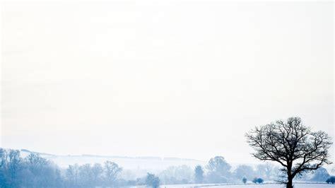 white winter landscape hd wallpaper