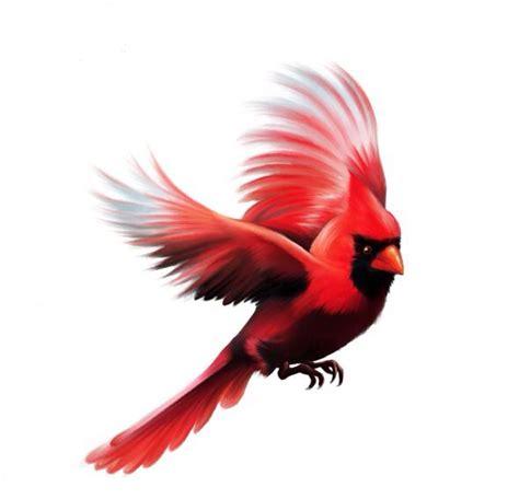 cardinal bird tattoo in flight cardinal