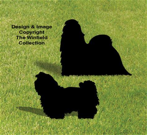 dogs shih tzu shadow pattern