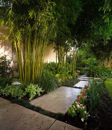 Landscape Ideas Mulch Bamboo Ideas Landscape Tropical With Paver Pathway
