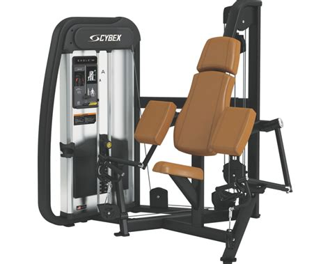 eagle nx arm curl cybex