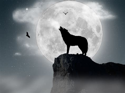 download moon wolf wallpaper 1600x1200 wallpoper 333423