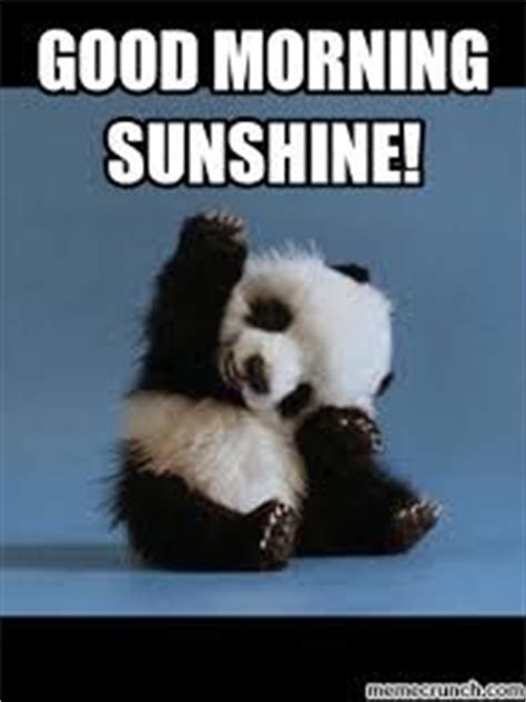 Cute Good Morning Meme - cute good morning sunshine meme images cute morning