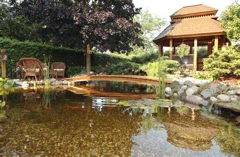 backyard oasis a backyard oasis