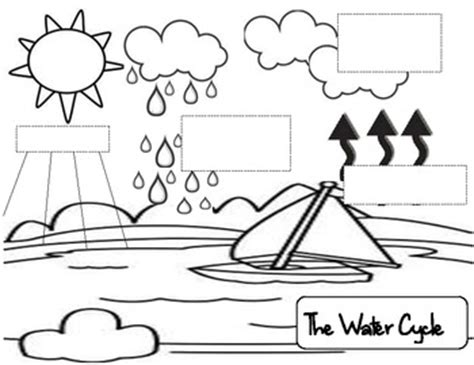water cycle coloring page pdf water cycle freebie printables ideas resources