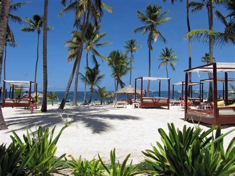 dreams palm beach resort beach gabizo picture of dreams palm beach punta cana
