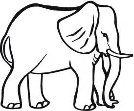 elephant color zentangle elephant coloring pages