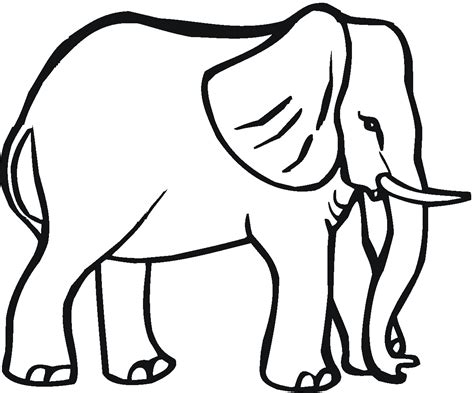 Free Coloring Pages Of Elephant Trunk Elephant Colouring Page