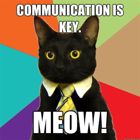 Business Cat Meme - communication is key meow business cat