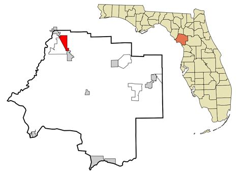 Levy County Search Levy County Florida