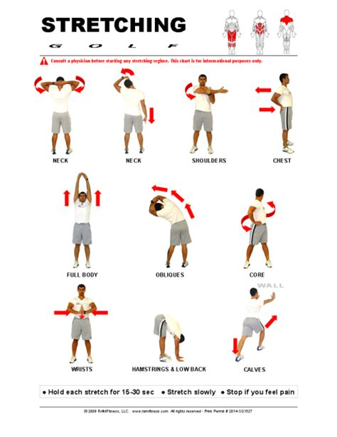 printable flexibility exercises printable stretching guides royalty free ramfitness