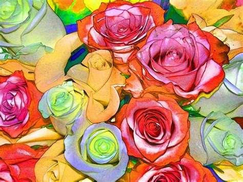 colorful roses colorful roses background free stock photo domain