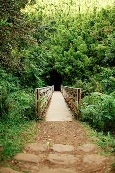 maui swinging bridges swinging bridge hike maui hawaii pinterest maui and