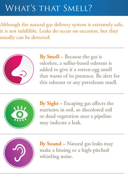 what to do if you smell gas in your house what to do if you smell gas in your house 28 images 17 best images about propane
