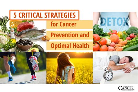 Detox On The About Cancer Series by 5 Critical Strategies For Cancer Prevention And Optimal Health