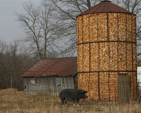 Big Corn Crib by