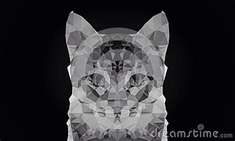 wallpaper poly cat abstract cat face black and white color low poly bokeh