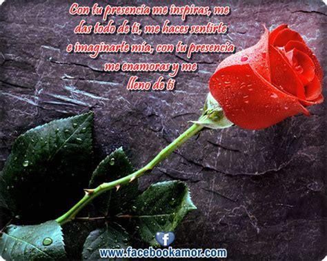 imagenes de rosas rojas con frases de amor postales de rosas rojas para el amor imagenes bonitas para