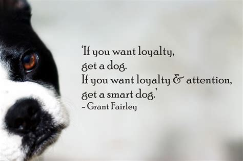 quote about dogs quotes about and dogs quotesgram