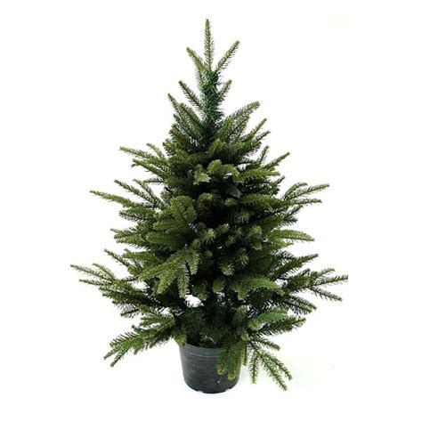 3ft hton spruce potted feel real artificial christmas tree top 28 3ft tree uk buy 3ft white tree 3ft 90cm multi coloured
