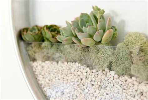 Hangende Planten Binnen by Wand En Verticale Bloempotten Originele Plantenbakken