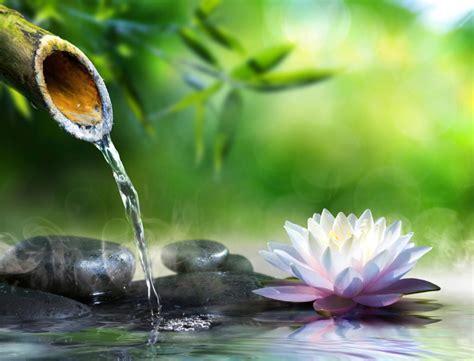 imagenes naturaleza zen sfondi desktop zen
