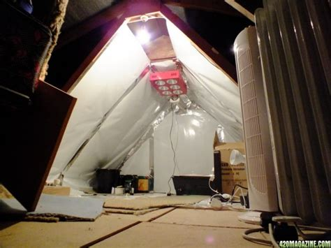 attic grow room attic grow room 420 magazine photo gallery