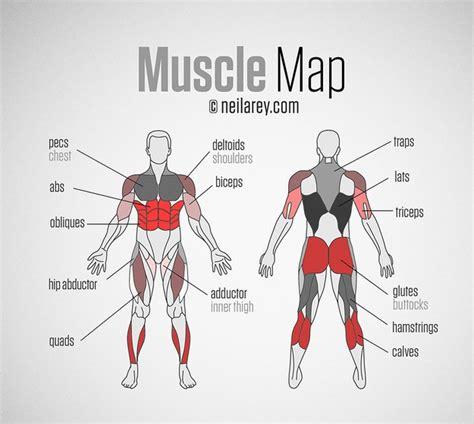 exercise diagrams sup workout routine