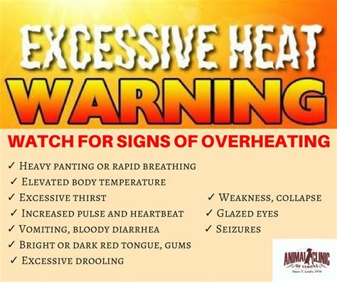 heat exhaustion in dogs animal clinic of verona verona va 24482 gt gt heat exhaustion in dogs