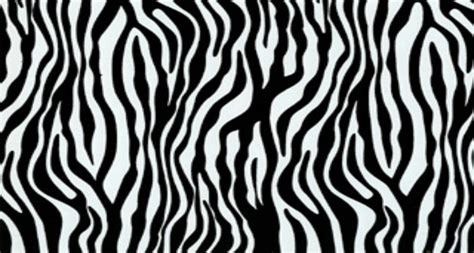 printable zebra print template best photos of zebra print stencil printable black zebra