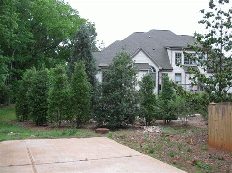 landscapers nc raleigh landscapers landscaping raleigh nc 28 images
