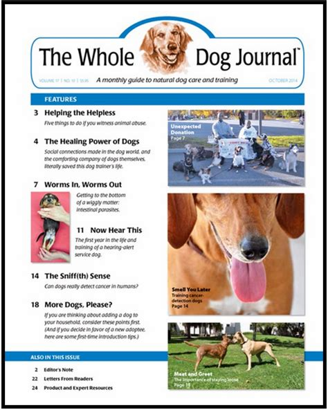 whole journal health resources healthy concepts with a nutrition bias
