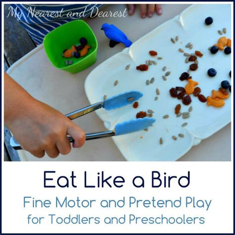 The 21 Best Images About Birds Preschool Crafts - 58 best birds and nests images on school