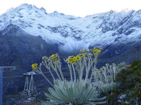 imagenes naturaleza venezuela inician en m 233 rida jornadas de fomento para empresas