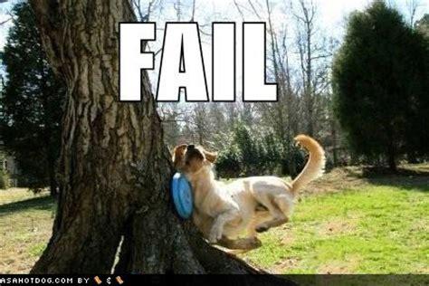 puppy fails fails