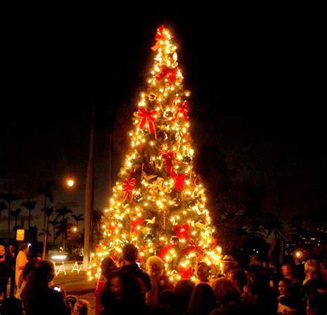 no tree lighting ceremony at bradley park in palm beach