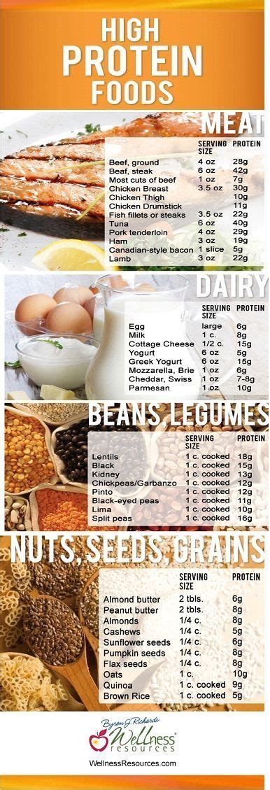 healthy fats low in protein protein foods high protein foods and protein on