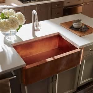 Kitchen Sink Trends Best Kitchen Sink Trends Loretta J Willis Designer