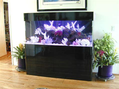 design marine aquarium home aquarium design home decorating ideas