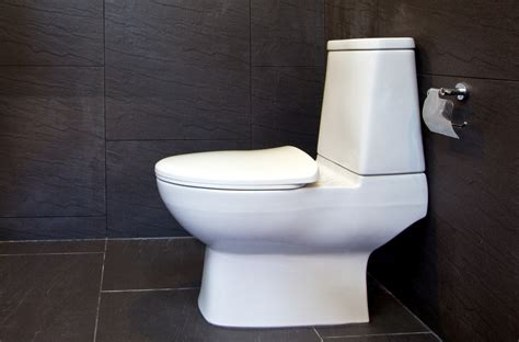 how to toilet a at how to install a toilet caldwell plumbing serving the gta and durham region