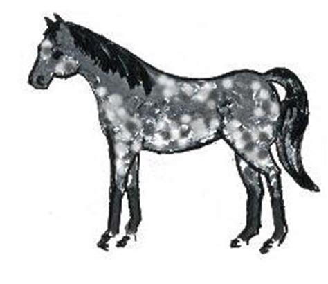 Cavallo Pomellato by Nuova Collezione Pomellato Cavallo