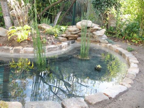 piscine castorama 715 avant apr 232 s 1 bassin pour redonner vie 224 1 jardin