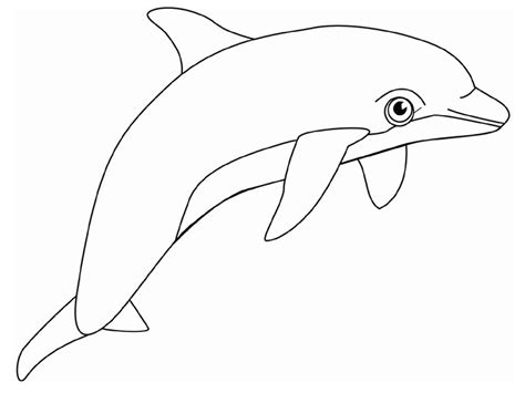 printable dolphin stencils dolphin coloring pages printable free printable dolphin